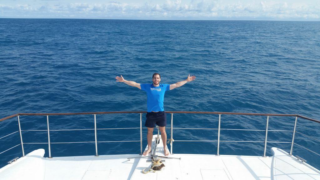 mergulho com baleias jubartes